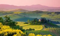 Under the Tuscan Sun: 2019 Annual Benefit Siena Sponsorship